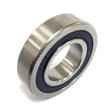 Cylindrical Roller Bearings (NU/302 E)